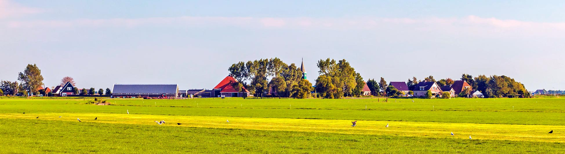 Friesland - Holland
